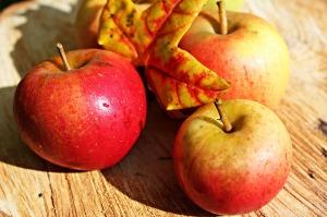 apple-496977_1280