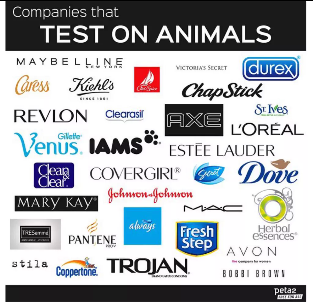 we should boycott animal testing for cleaning and beauty products I see bissell's name of lists for products to boycott because of the animal testing and a we only recommend word needs to get out that they do animal testing.