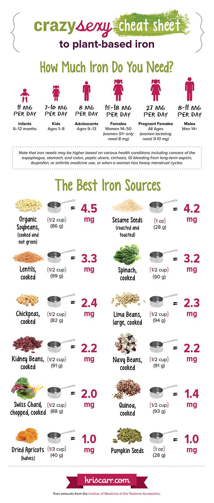 wpid-kriscarr-iron-infographic1